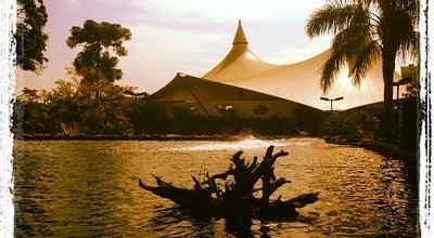 Photo of Park Parque Engenheiro Salvador Arena at Av. Caminho Do Mar, 2980, São Bernardo do Campo 09612-000, Brazil