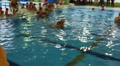 Photo of Pool セントモニカスイミングクラブ at 南林間3-10-1, 大和市, Japan