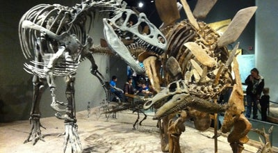 Photo of Science Museum Denver Museum of Nature and Science at 2001 Colorado Blvd, Denver, CO 80205, United States