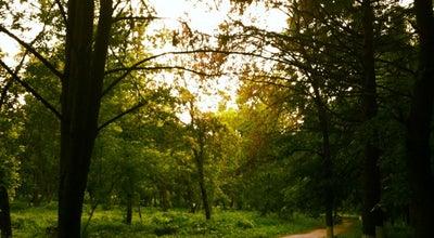 Photo of Park Люберецкий парк at Октябрьский Просп., Lyubertsy, Russia