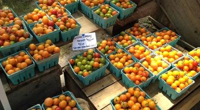 Photo of Farmers Market Farmers Market: Deering Oaks at Deering Oaks Park, Portland, ME 04101, United States