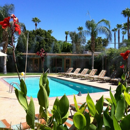 from Cayson gay hotel warm sands palm springs