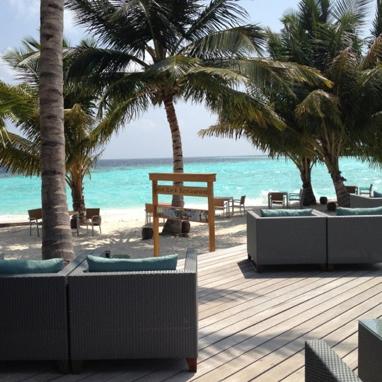 Paw Spa Resort Reviews