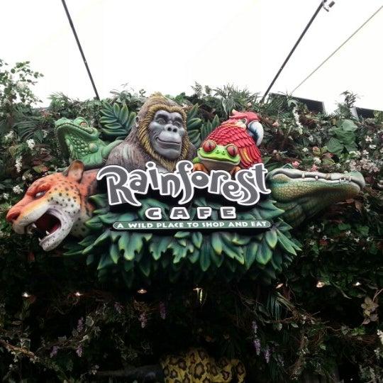Rainforest Cafe Miami Sawgrass