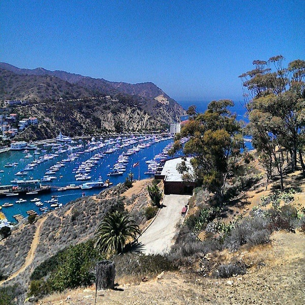 Photo taken at Santa Catalina Island by tareq a. on 7/16/2013