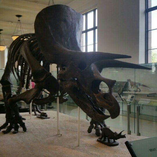 Photo taken at David H. Koch Dinosaur Wing by Alerrandro C. on 5/13/2015