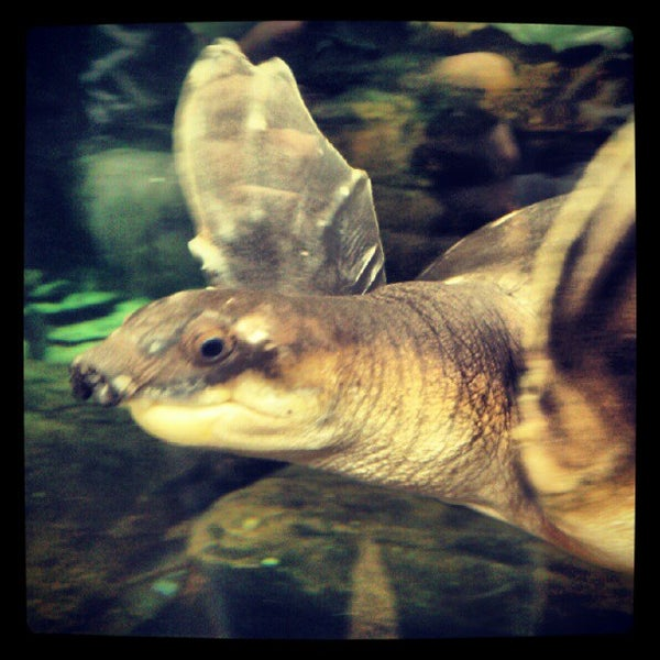 Photo taken at National Aquarium by Stanislav L. on 9/16/2012