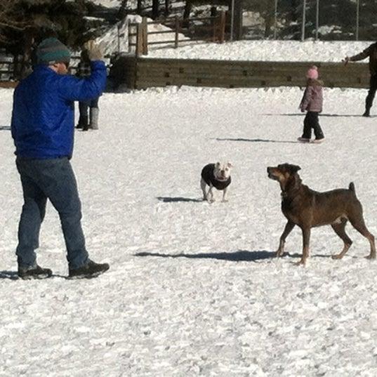 Photo taken at Carter Dog Park by Brandi B. on 12/30/2012