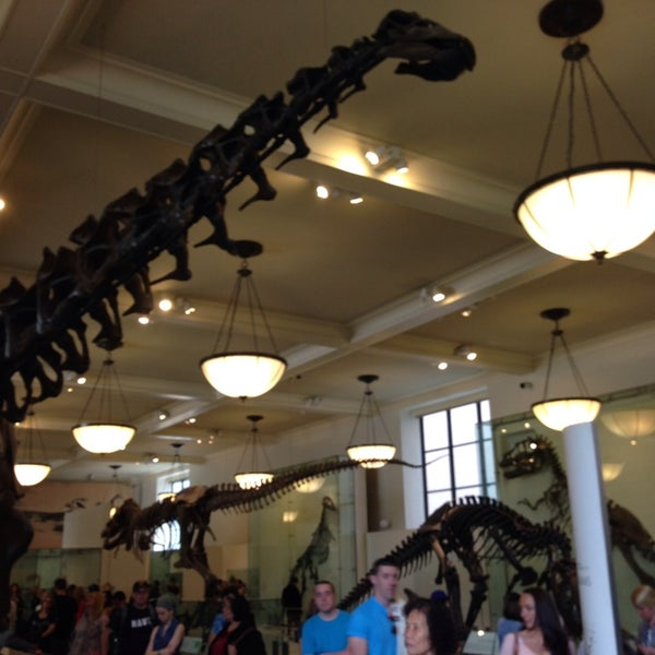 Photo taken at David H. Koch Dinosaur Wing by soypan on 5/24/2014