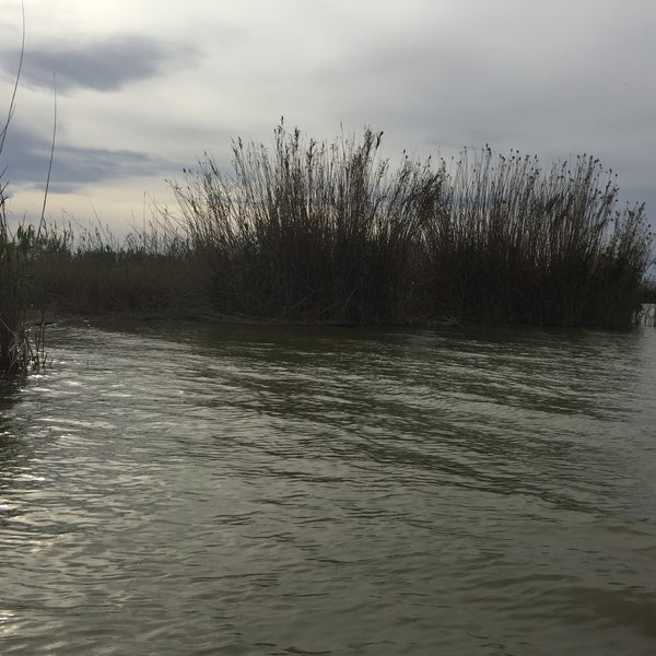 Photo taken at La Albufera by Montse D. on 3/25/2016