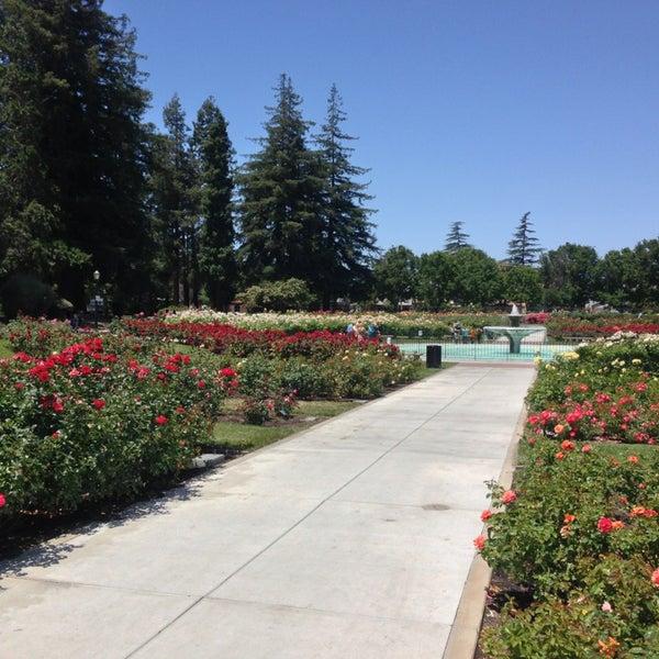 San Jose Municipal Rose Garden Rose Garden San Jose Ca