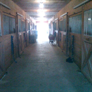 Photo taken at Oakshade Stables by Syd A. on 2/27/2011