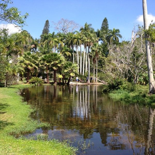 Photos At Sarasota Jungle Gardens 3701 Bay Shore Rd