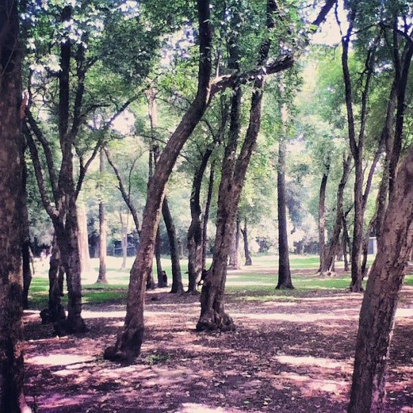 Photo taken at Bosque de Chapultepec by Franz E. on 9/14/2012