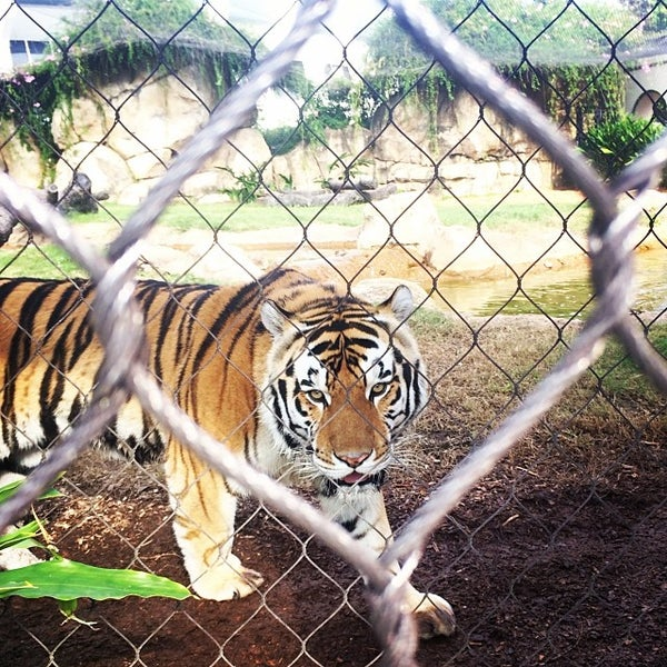 Photo taken at LSU - Mike's Habitat by Dante' J. on 11/15/2013