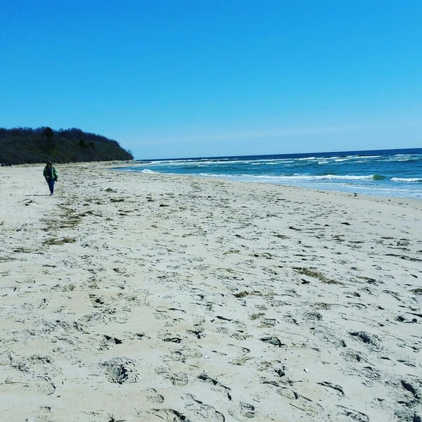 Plum Island Beach: Sandy Point Plum Island Reservation