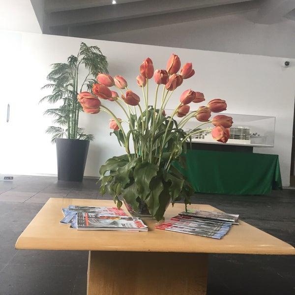 Cie comercial office in hip dromo de las am ricas for Cie 85 table 4