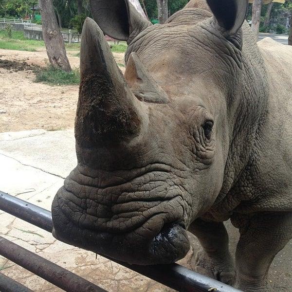 "Photo taken at สวนสัตว์เปิดเขาเขียว (Khao Kheow Open Zoo) by Anton ""exSt"" S. on 5/21/2013"
