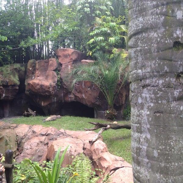 Photo taken at Maharajah Jungle Trek by Jonathan K. on 7/17/2014
