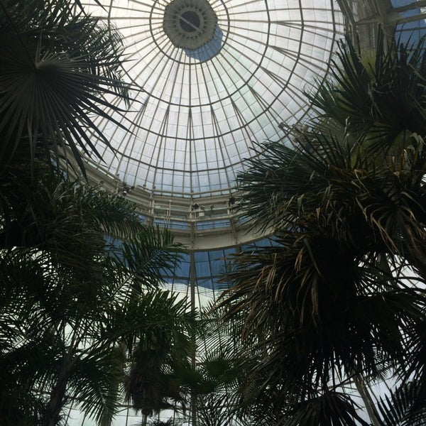 Photo taken at Enid A. Haupt Conservatory by Marc d. on 6/15/2014