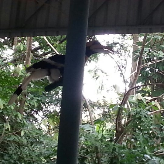 Photo taken at Khao Kheow Open Zoo by sarawut t. on 12/9/2012