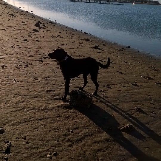 Photo taken at Constitution Beach by Shawnee on 4/1/2014