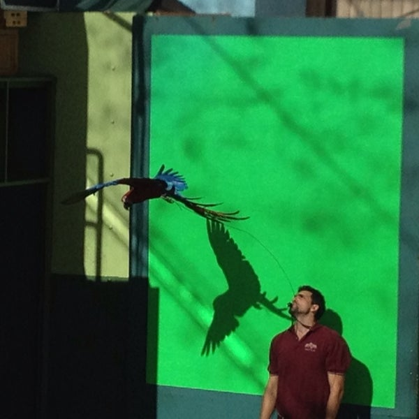 Photo taken at Universal's Animal Actors by Diane on 1/14/2014