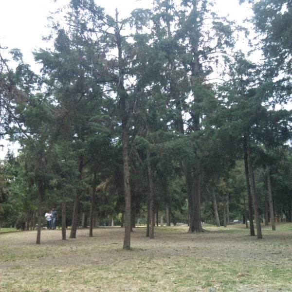 Photo taken at Bosque de Chapultepec by Yasser E. on 3/9/2014