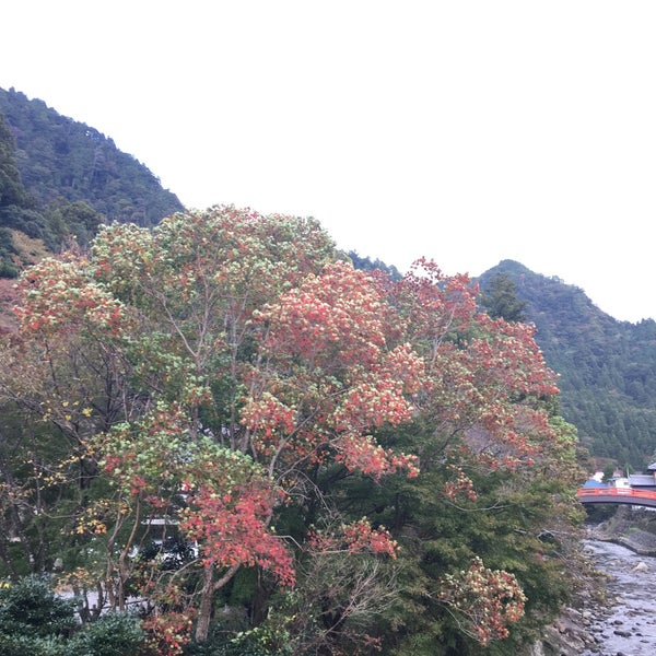 Photo taken at 室生寺 by Katsumi Y. on 10/29/2016