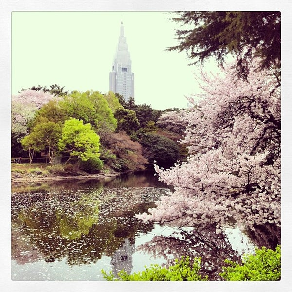 Photo taken at 新宿御苑 (Shinjuku Gyoen) by Gio on 3/30/2013