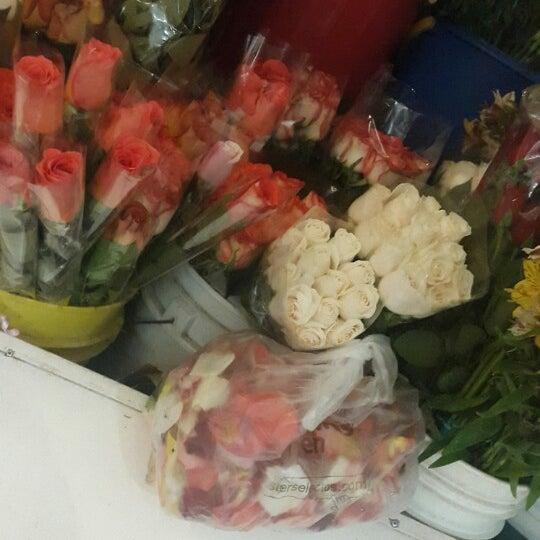 Photo taken at Centro Comercial El Paseo by Adela E. on 7/31/2014