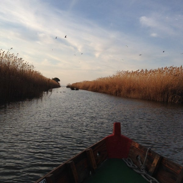 Photo taken at La Albufera by ANTONIO T. on 1/12/2014