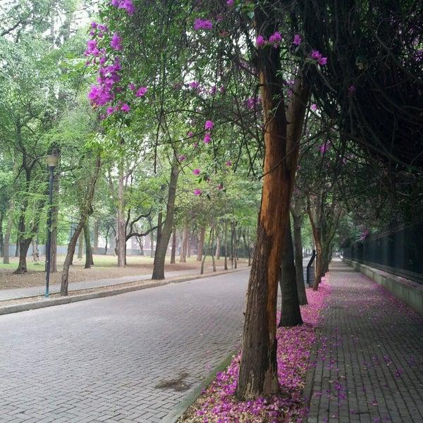 Photo taken at Bosque de Chapultepec by Dimka D. on 6/14/2013