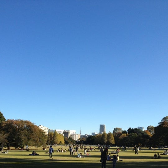 Photo taken at 新宿御苑 (Shinjuku Gyoen) by yakkunkun on 11/10/2012