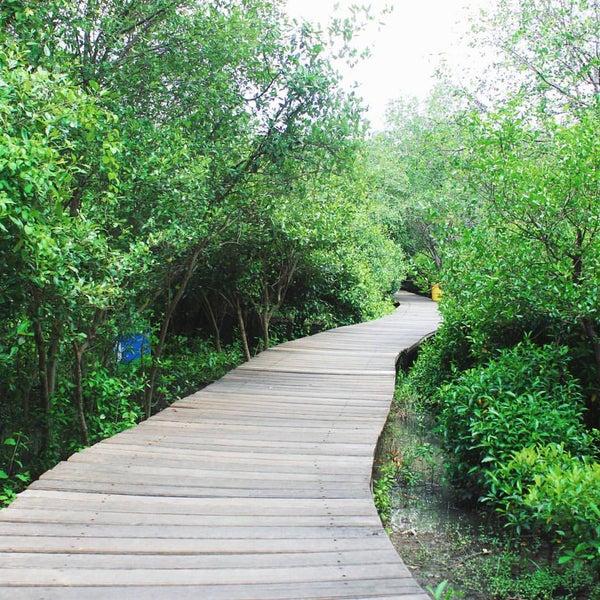 Photo taken at Ekowisata Mangrove by Ikbar A. on 2/26/2016