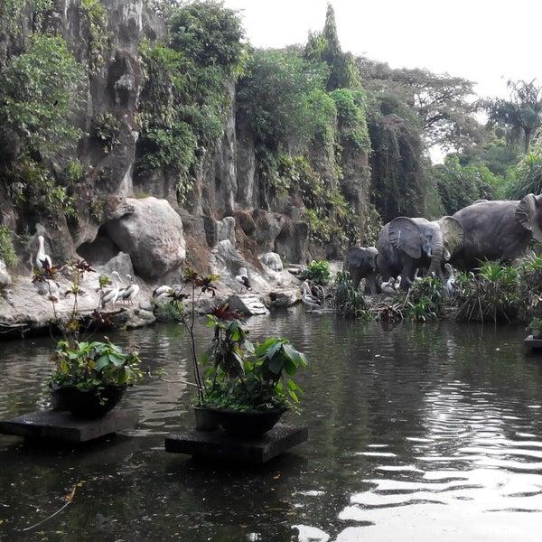 Photo taken at Kebun Binatang Ragunan by Evryta C. on 7/6/2014
