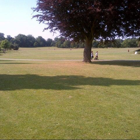Dog Park Horsham