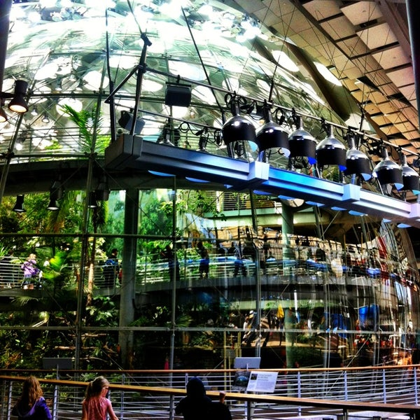 California Academy Of Sciences Science Museum In San