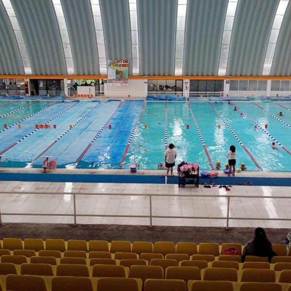 Alberca ol mpica deportivo reinosa santa b rbara for Clases de natacion df