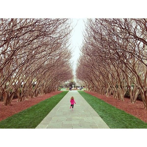 Dallas Arboretum And Botanical Garden Dallas Tx