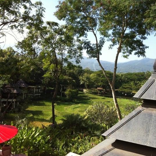 Four Seasons Chiang Mai Thai Kitchen Live Reviews