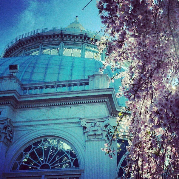 Photo taken at Enid A. Haupt Conservatory by Peter D. on 4/21/2013