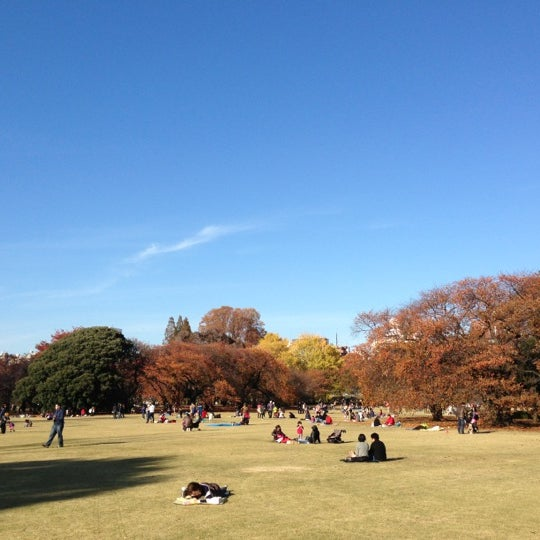 Photo taken at 新宿御苑 (Shinjuku Gyoen) by Goki. U. on 11/25/2012