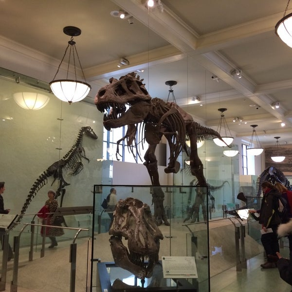 Photo taken at David H. Koch Dinosaur Wing by Greet D. on 3/17/2014
