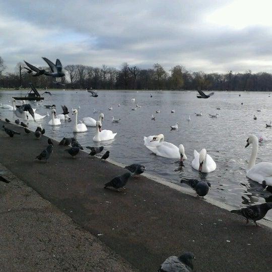 Photo taken at Kensington Gardens by shota r. on 11/29/2012