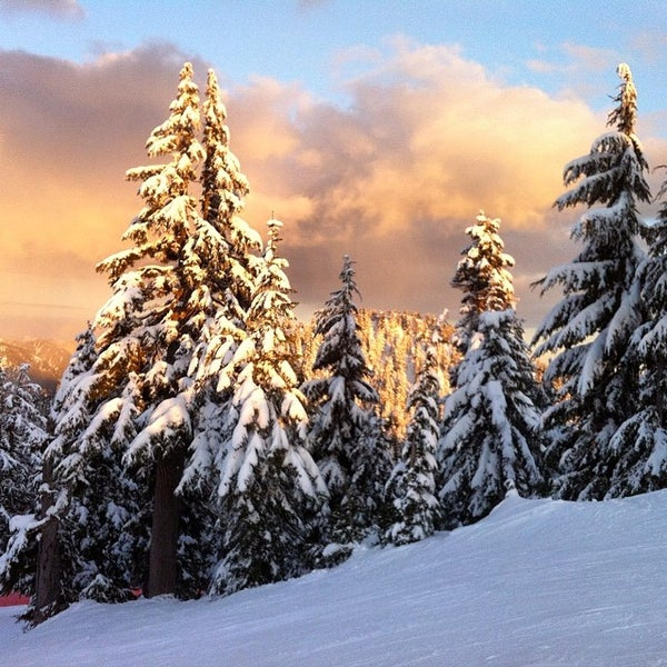 Photo taken at Cypress Mountain by Cameron W. on 3/22/2014