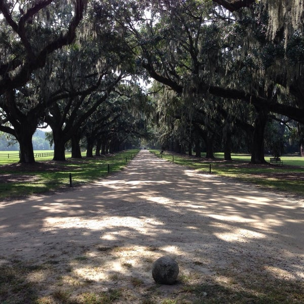 Boone hall pumpkin patch coupons