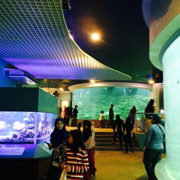 Aquarium Marine Museum 4 Tips From 313 Visitors