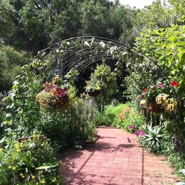 Butterfly garden leu gardens orlando fl for Butterfly garden orlando