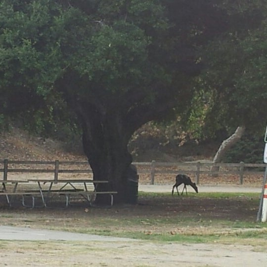 Photo taken at Griffith Park Pony Rides by Kali K. on 9/23/2012
